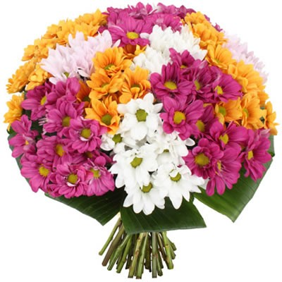 Букет из 15 цветных хризантем «Изысканная палитра»