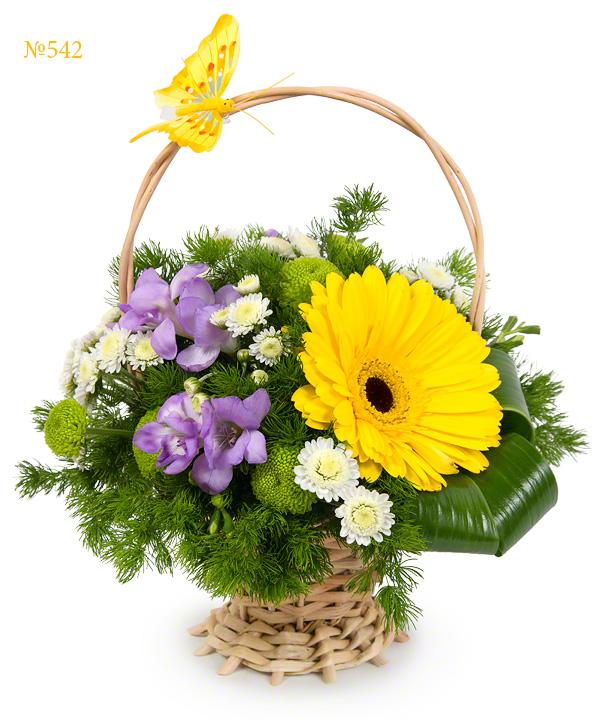 Корзина цветов с фрезиями и кустовыми хризантемами «Школьный бал»
