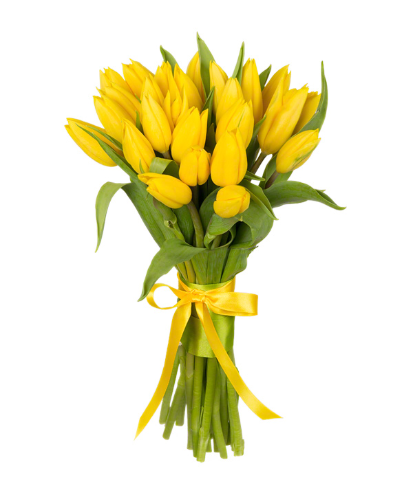 Букет из 25 жёлтых тюльпанов «Тепло солнца»