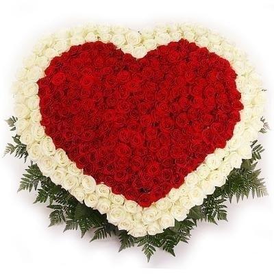 Цветочная композиция из 101 розы «Сокровенная любовь»