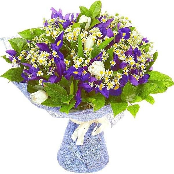 Букет из 11 ромашек, 15 ирисов и 7 тюльпанов «Весеннее небо»