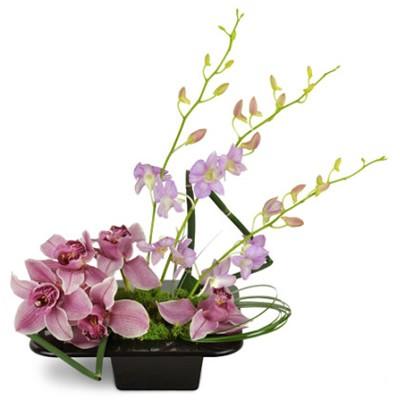 Цветочная композиция из 8 орхидей, берграса и мха «Сопрано»