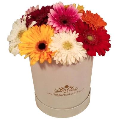 Цветы в коробке  с 11 герберами «Невиданный цветок»