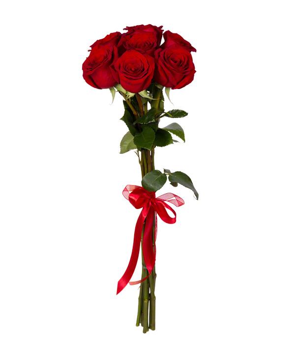 Букет из 7 красных роз «Бархатная ночь»